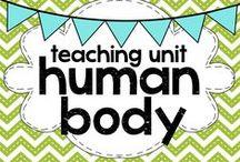 home teaching: human body