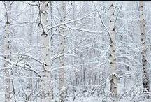 F/W / syksy ja talvi. fall and winter.  kuvissa. in pictures.