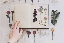 Crafty / by Rachael Stahnke