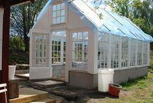 Greenhouse ideas / by Kim Hicks