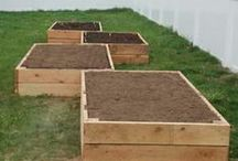MamaDezee's home and farm Projects!