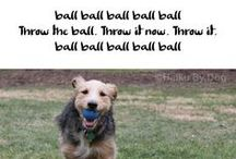 Haiku By Dog™ / canine perspectives / haiku penned by dog poets / but first throw the ball