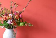 Coral Inspiration / Ideas and inspiration featuring the many vibrant shades of coral.