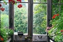 Indoor & Outdoor Gardening