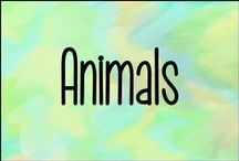 Animals / These are the animals I'd love to have!