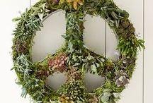 • tree hugger • / environmentally friendly, hippie-esque and gardening