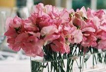 Sweet Art: Floral Arrangments