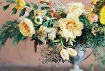 Flowers: YELLOW/MUSTARD
