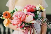 Flowers: CORAL