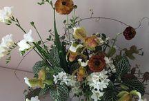 Flowers: MULTI WINTER