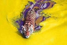 Geaux LSU™ / by Tammy Griffith