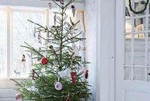 Celebrate {Christmas}