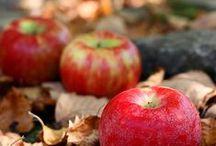 Syksy - Autumn