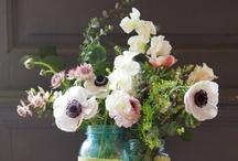 • Flower & Wedding Decorations