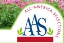 AAS 2012 DG Contest / 2012 All-America Selections Display Garden Landscape Design Contest / by National Garden Bureau