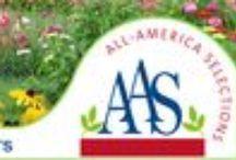 AAS 2013 DG Contest / 2013 All-America Selections Display Garden Landscape Design Contest Category I: fewer than 10,000 visitors per year Category II: 10,001 - 100,000 visitors per year Category III: Over 100,000 visitors per year / by National Garden Bureau