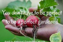 Gardening Wisdom / Sometimes we all need a little wisdom and often wisdom comes from the Garden #WednesdayWisdom #GardenWisdom