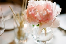 Florals / by Kristin Newman Designs