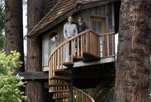 Treehouses / Ultimate hideouts to escape.