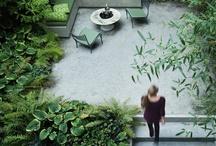 gardens. / by Peonies & Polaroids