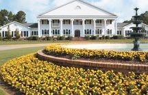 Brunswick Plantation & Golf Resort / Brunswick Plantation offers the best golf & vacation rental accommodations in Brunswick Country.We are located just north of Myrtle Beach and only 10 minutes from beautiful Sunset Beach.
