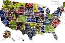 Wine Regions / ALL 50 states now have wineries. This is your guide to America's wineries.  Wine not visit them ALL? / by Wine Gifts - SterlingWineOnline.com