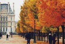 fall / by danyelle elizabeth