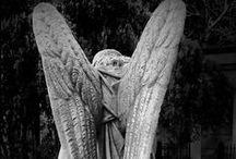 Angels / by Melinda Morley