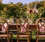 ∙ Styled Shoot: Les Bourgeois Vineyards ∙
