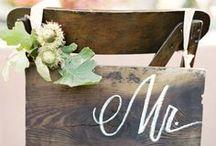 Wedding Details / Drinks, cakes, favors & etc...