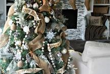 winter holidays and ideas / by Dmarie Jacks