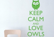 owls / everyone is fond of owls