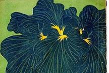 Midnight Blossom - Flowers Dark as Night / by Amber Rowe