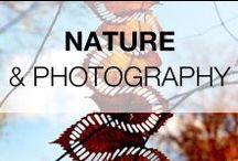 Beautiful Nature Scenes & Photography / Beautiful Nature Scenes, Photography & Land Art!