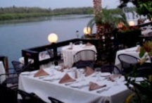 Sarasota Restaurants / A listing of some of the finest restaurants in the Sarasota area.