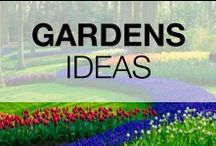 """Garden Ideas & Projects / Share all your pictures of nice gardens or garden tips with us ! Please PIN only #7 at a time ! But, there is **NO** 24 Hour limit ! This is a high quality, safe, family oriented & """"G"""" rated board. If you are a #Blogger, please feel free to add friends ! No #Etsy, #Google or #Tumblr pins. Any spam will be reported to Pinterest. Thanks and Have Fun ! Wants more ? Visit www.1001gardens.org"""