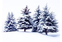 A Touch of Heaven / The Majesty of Winter