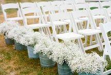 Wedding Day / Wedding dresses, ideas, and decor.