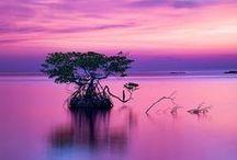 Sunrise & Sunset / Awe-inspiring sunrise & sunsets from around the globe