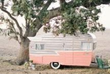 Glamping / by Randi Marie Photography