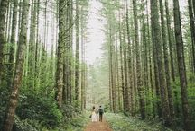 BRUILOFT IN HET BOS // Forest Wedding