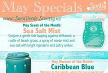 Scentsy Scents and Warmers of the Months / www.SaraVerde.Scentsy.us
