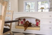 Pet Spaces & Ideas
