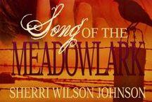 Song of the Meadowlark / Christian Books