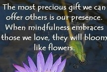 Meditation  / Mindfulness, LovingKindness, Meditation