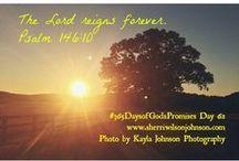 365 Days of God's Promises / Faith and Christianity