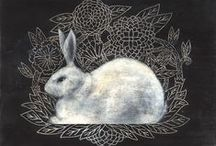 rabbit + hare / by Mei-ling Humphrey
