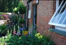 The courtyard / Home to a number of independent businesses and full of beautiful plants and flowers.