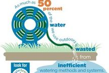 Outdoor water use / Ideas on staying water conscious outdoors!