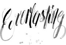 Typography and Lettering / by Jaclyn Fairchild